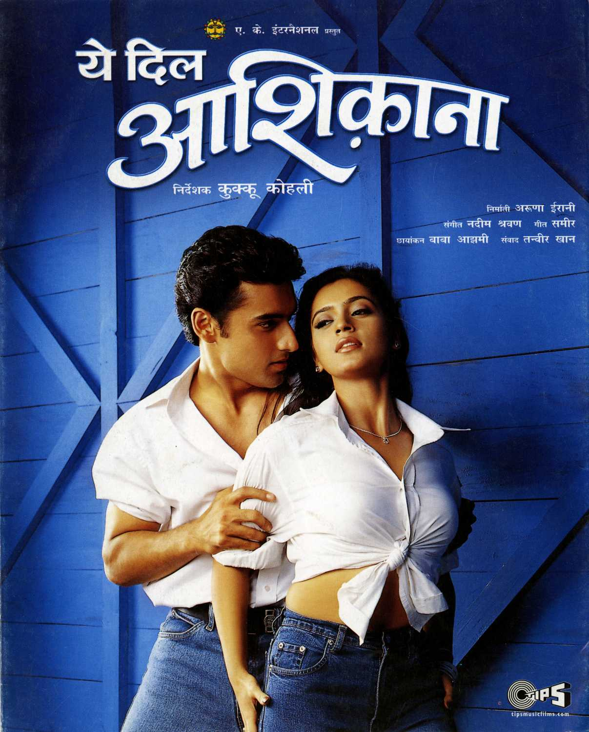 Image result for YEH DIL AASHIQANAA (2002) poster
