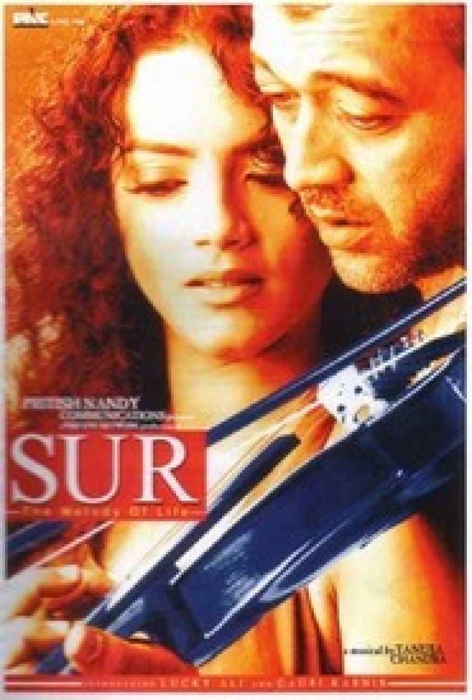 Sur (2002) Untouched {Media Partners Inc} DVD9 – DUSIcTv @ CaptainAmerica