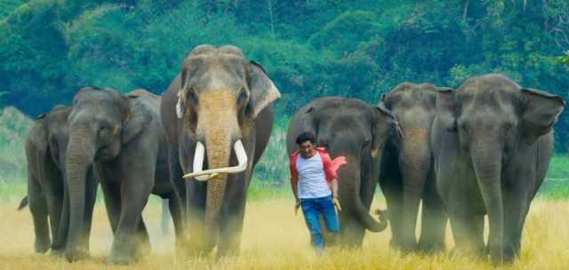 Jubin Nautiyal Brings A Pleasant Pop-rock Rhythm Into Vidyut Jammwal's Film